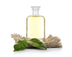 Seraj Natural Ingredients - Oils with leaves and cloth